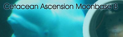 Cetacean Ascension Moonbase 8 (CAM 8)